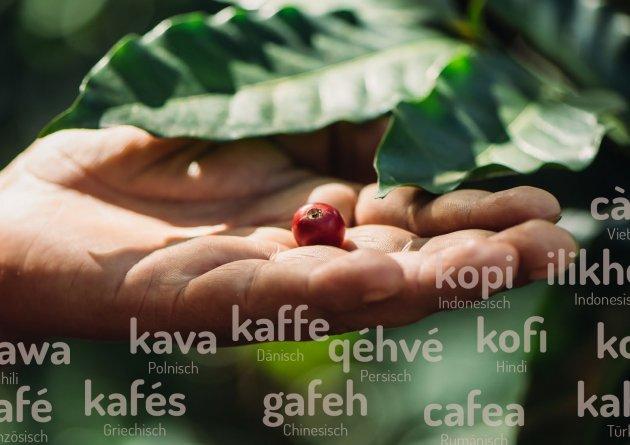 fairevercoffee-a4_v6-2_kopie.jpg